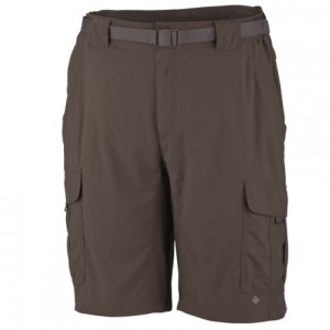 Hiking Shorts for Men
